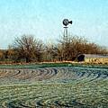 Oklahoma Farm In Winter by Annie Adkins