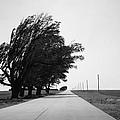 Oklahoma Route 66 2012 Bw by Frank Romeo