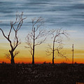 Country Road Sunset by Cynthia Kerens