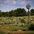 Oklahoma by Valarie Case