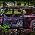 Old Abandoned Car In The Woods by Paul Freidlund
