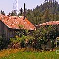 Old And Abandoned In The Country by John Malone