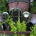 Old And Rusty by Sherman Perry