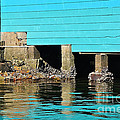 Old Aqua Boat Shed With Aqua Reflections by Kaye Menner
