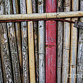 Old Bamboo Fence by Niphon Chanthana