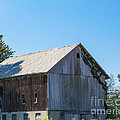 Old Barn 1  by Coertje Feil