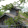 Old Barn 11 by Dwight Cook