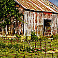 Old Barn #3 by Tom Gari Gallery-Three-Photography