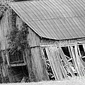 Old Barn 5 by Dwight Cook