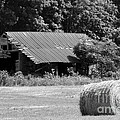 Barn In Kentucky No 84 by Dwight Cook