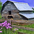 Old Barn And Flowers by Kenny Francis