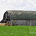 Old Barn And Round Bales by David Arment