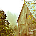 Old Barn by Cheryl Baxter