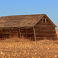 Old Barn by Shane Bechler