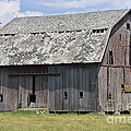 Old Barn by David Arment