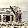 Old Barn by Dianne Phelps