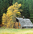 Old Barn In Autumn by King Wu