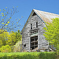 Old Barn In Spring Maine by Keith Webber Jr