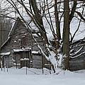 Old Barn In Winter by Linda Kerkau