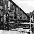 Old Barn by Judy Bottler