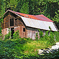 Old Barn Near Chimney Rock by Duane McCullough