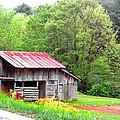Old Barn Near Willamson Creek by Duane McCullough