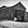 Old Barn by Ron Roberts