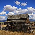 Old Barn Rush Valley by Gene Praag