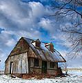 Old Barn Winter by Sydney Tran