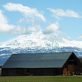 Old Barn With Mount Rainier View by Jessica Foster
