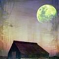 Old Barn3 by Irina Hays
