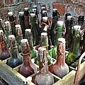 Old Beer Bottles by Emma Motte