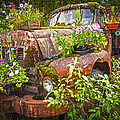 Old Truck Betsy by Mike Reid
