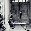 Old Bicycle by Jelena Jovanovic