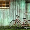 Old Bicycle Leaning Against Grungy Barn by Sandra Cunningham