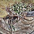 Old Boot Flowerpot by Debbie Portwood