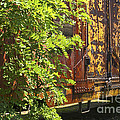 Old Boxcar Dying Slowly by Paul W Faust -  Impressions of Light