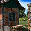 Old Brick Shed by Liane Wright