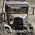 Old But Not Forgotten by Image Takers Photography LLC - Laura Morgan