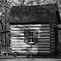 Old Cabin At Fort Washita In Bw by Robyn Stacey
