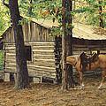 Log Cabin - Back View - At Big Creek by Don  Langeneckert