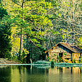 Old Cabin By The Pond by Parker Cunningham