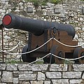 Old Cannon by George Katechis