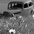 Old Car by Leticia Latocki