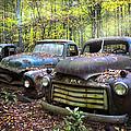 Old Cars by Debra and Dave Vanderlaan