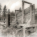 Old Cattle Ramp by Dianne Phelps