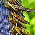Old Clothes Pins II - Digital Paint by Debbie Portwood