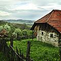 Old Cottage by Jelena Jovanovic