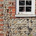 Old Cottage Window Sussex Uk by Julia Gavin