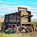 Old Covered Wagon by Athena Mckinzie
